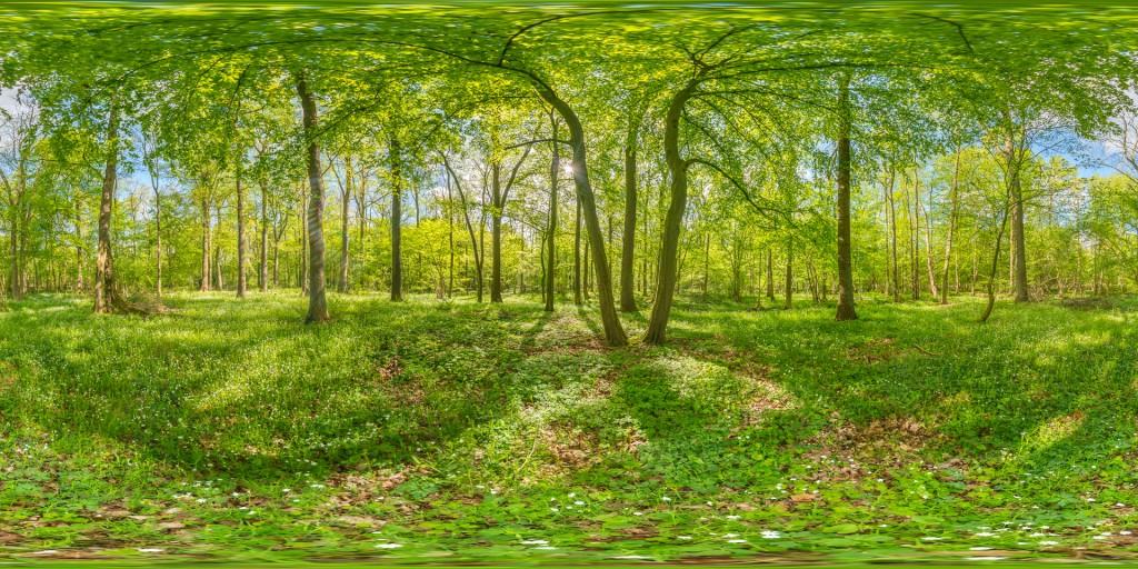 AU1_EM1_DSC9374-HDR Panorama
