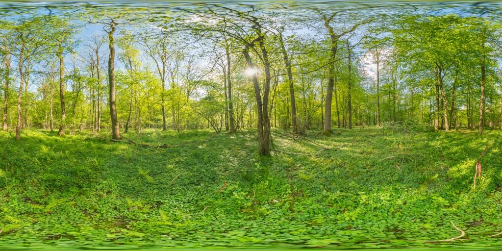 AU1c_DSC9392-HDR Panorama