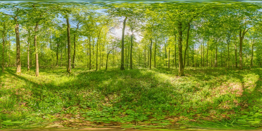 AU3d_DSC9416-HDR Panorama